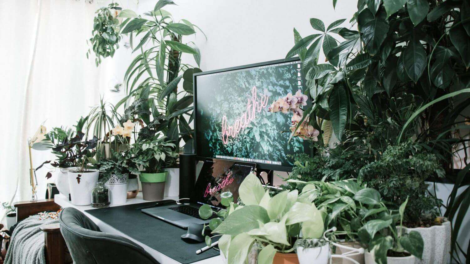WFH Wellness: Staying Productive & Motivated While Working From Home